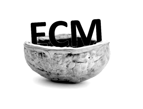ECM (Enterprise Content Management) in a nutshell